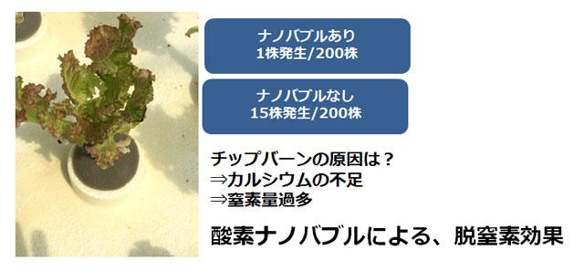 「水で日本の農業が変わる」ナノバブルウォーターe-sodachi(いいそだち)のご紹介│画像3