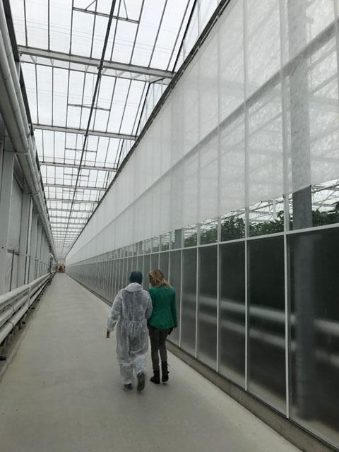 【ナノバブル】オランダ最先端農業研修 -第2回-│画像5