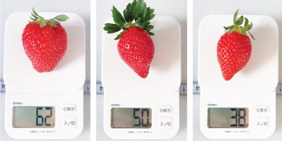 イチゴに使用 image