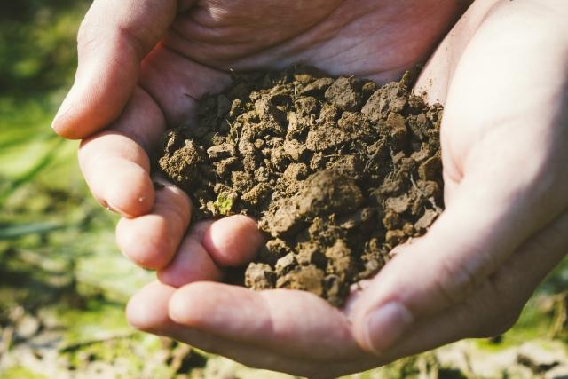 土づくりにおける微生物活用法とは画像1