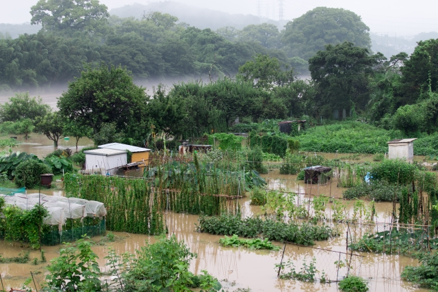 農家の悩みごと 病害虫・土地・被災支援についてまとめ画像3