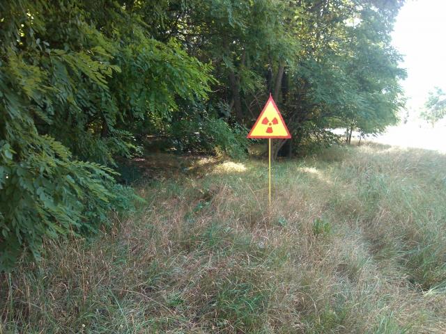農用地の土壌汚染について知る画像5