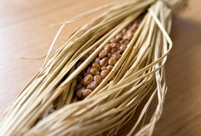 身近な食品微生物・納豆菌の農業利用。納豆菌が与える土壌への効果とは