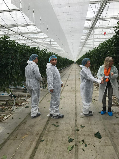 【ナノバブル】オランダ最先端農業研修 -第2回-│画像7