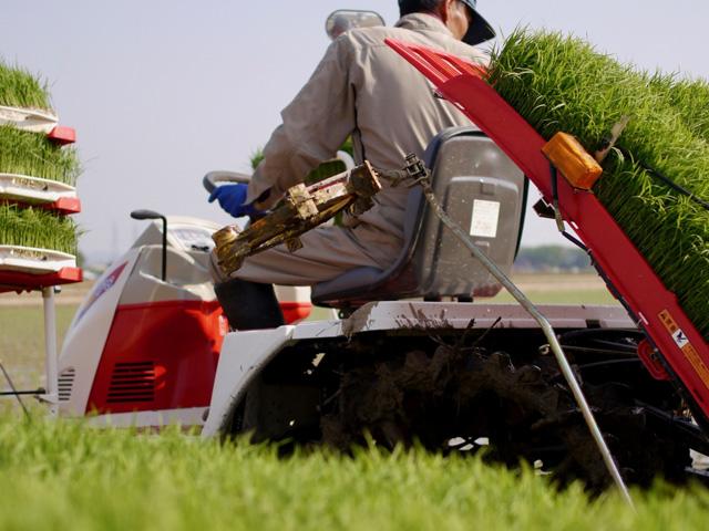 農業経営が取り組みやすくなる?農業経営基盤強化準備金制度とは│画像1