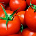 受粉不要なトマトって何?!農作業が楽になる新しいトマト