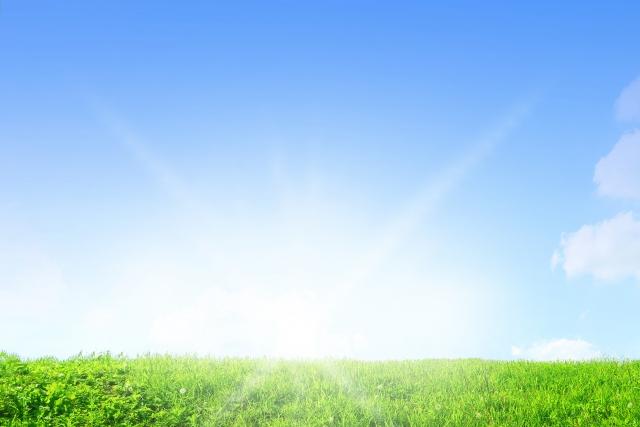 農業で、ビジネスと環境保全を両立させることはできるのか│画像1