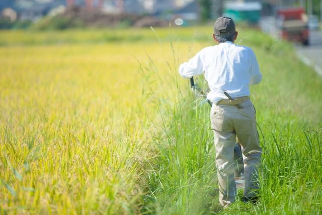 農業のハイテク化、進む。日本と海外の違い│画像1