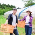 農業への転職が増えている?!若者が農業を選ぶ理由