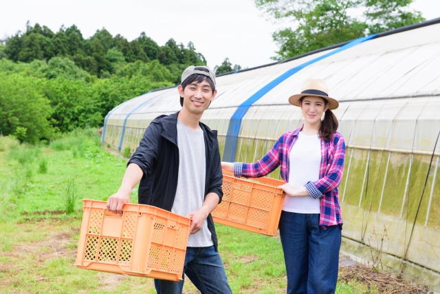 農業への転職が増えている?!若者が農業を選ぶ理由│画像1