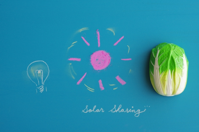 ソーラーシェアリングに適した農作物と導入事例 画像1