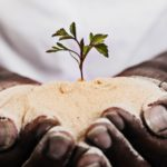 地球温暖化の現状と高温耐性稲をはじめとする地球温暖化への対策とは