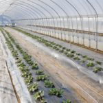 農業のコスト削減につながるか!?農業生産資材価格の『見える化』