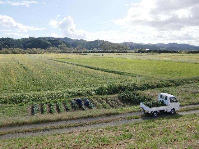 【世界の農業大国と日本の農業は何が違うのか|画像1】