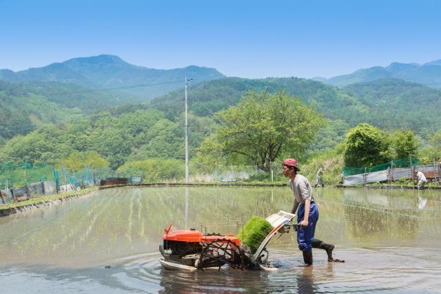 【お金持ち農家が多い市区町村ランキング|画像4
