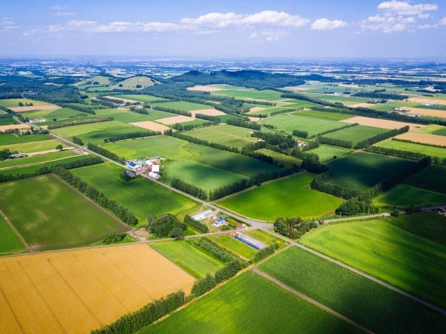 【世界が直面する大規模農業の問題点と対策とは|画像1】