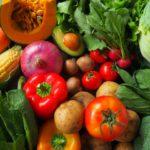 少量多品種栽培で儲かる農家になれるのか?