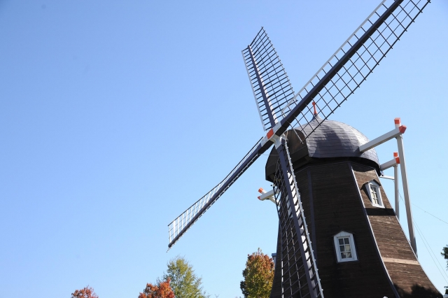 農業大国オランダと日本の違いは「流通」にある?!
