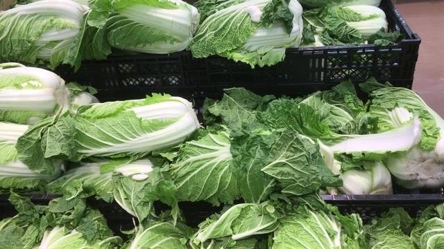 重量野菜の価格の乱高下はなぜ起きる?|画像2