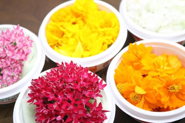 """""""食べられる花""""エディブルフラワー。栽培方法と気になる栄養について 画像2"""