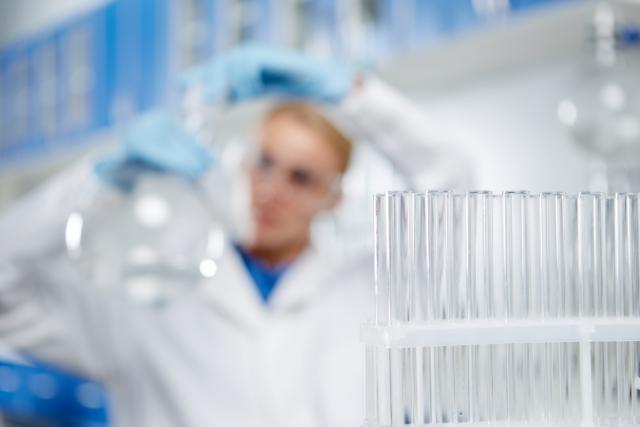 ゲノム編集と遺伝子組み換えって何が違うの?!|画像3