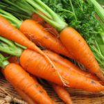 今更聞けない「特別栽培農産物」とは。農産物の表示について徹底解説