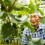 農業の担い手不足をシェアリングエコノミーで解決。宮崎県の地域商社がガイアックス「スタートアップスタジオ」発の農業人材マッチング事業と提携