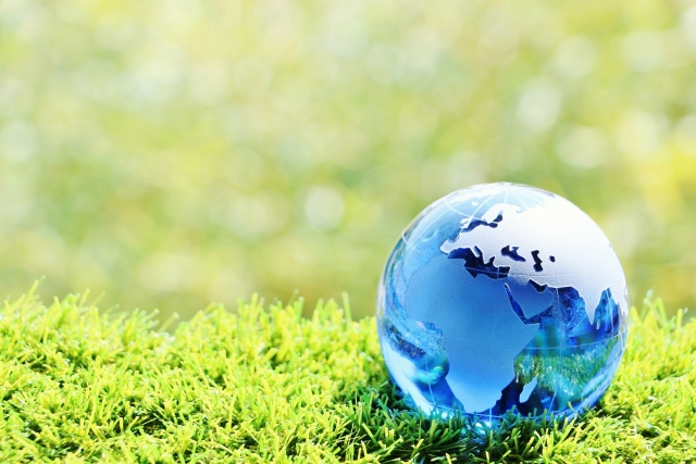 不要プラスチックパレットを回収!CO2削減、地球温暖化対策に着目する農業資材のあり方について|画像3