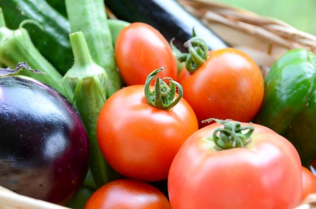 世界の有機農産物事情。注目高まる有機農産物、ある地域ではこんな政策も?!|画像2