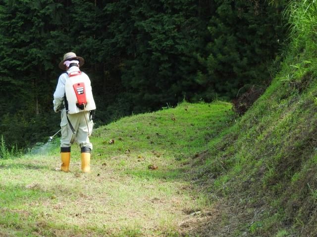 除草剤「ラウンドアップ」の損賠訴訟について知っていますか|画像1