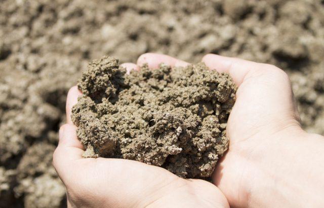 微生物は土壌改良の役に立つ【前編】微生物を活用するときのコツ|画像1