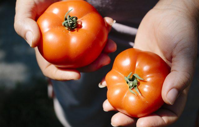 農業経営で成功するためにおさえておきたい「消費者目線」とは|画像1