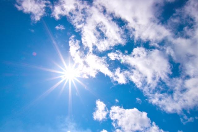 これからやってくる夏の酷暑を利用しよう!太陽熱土壌消毒のススメ 画像2