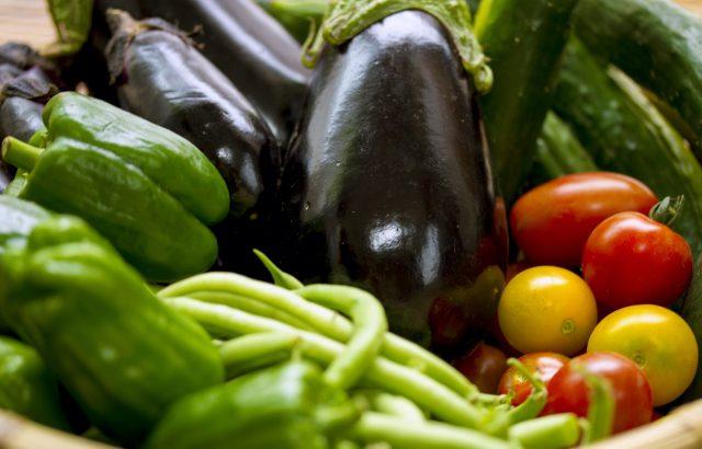 アメリカやヨーロッパを中心に広がる「CSA(地域支援型農業)」とは