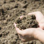 農地土壌劣化について。世界各国で危機感高まる土壌劣化
