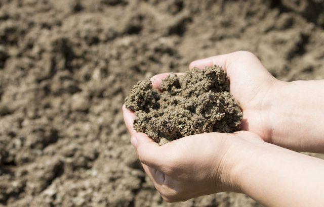 農地土壌劣化について。世界各国で危機感高まる土壌劣化|画像1