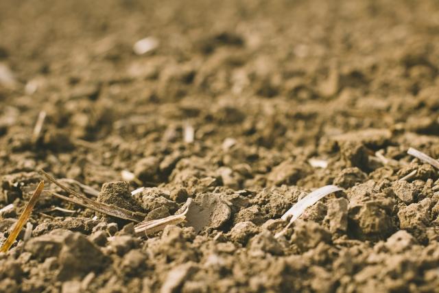 農地土壌劣化について。世界各国で危機感高まる土壌劣化 画像2
