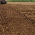 今さら聞けない土壌診断の用語。化学性診断の指標について解説。