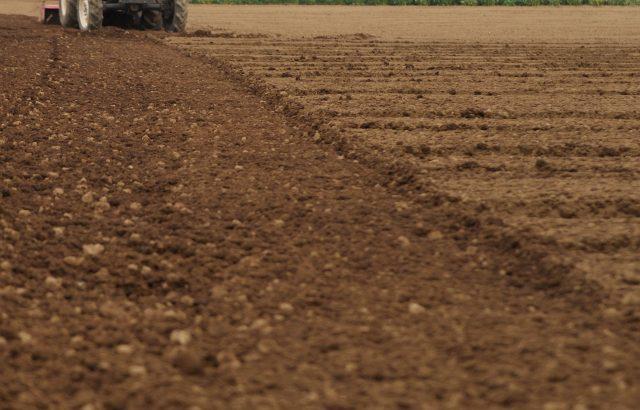 今さら聞けない土壌診断の用語。化学性診断の指標について解説。|画像1