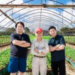 創業30年のあまおう農家と障がい者就労支援ベンチャーが農業法人「ONE GO(ワンゴー)」を設立:福岡県久留米市