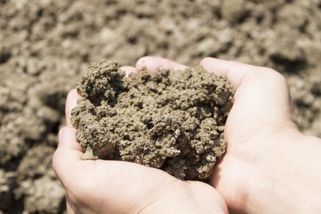 土壌改良剤「酸素供給剤」にはどんな効果があるのか。|画像1