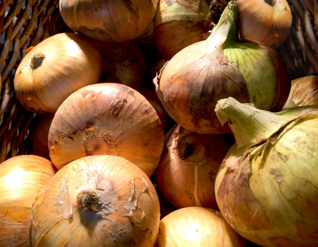 野菜を美味しく育てる「以外」で売上をアップする方法。マルシェ出店や包装を工夫するだけで売上アップ!?|画像2