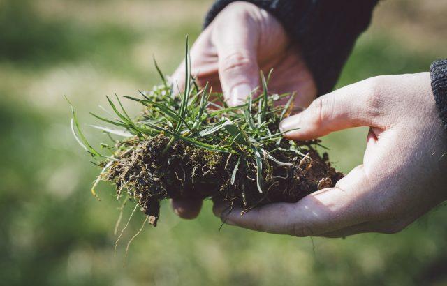 インターネットで手軽に使える「農耕地土壌図」の使い方。土壌図の活用と土性の判定で農地に適した作物を知る!