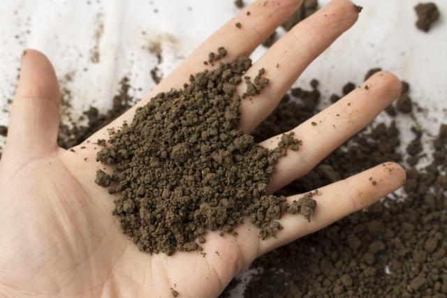 施設園芸の労力&コスト削減に役立つ養液土耕栽培のメリットと留意点とは。 画像2