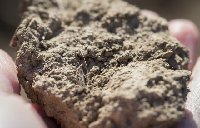 土づくりに役立つ基礎知識「土性区分」について|画像1