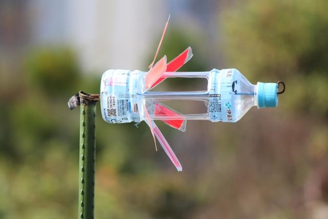 害虫の物理的防除や保温に役立つ!?ペットボトルを活用した農作業アイデアまとめ。 画像1