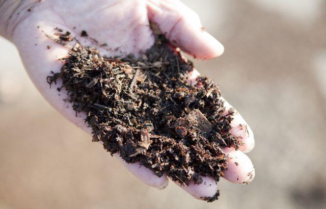 微生物資材を使用する際の注意点。微生物資材を使う前にやっておきたい現場試験について。