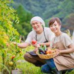 新規就農者育成研修ではどのようなことを学ぶことができるのか