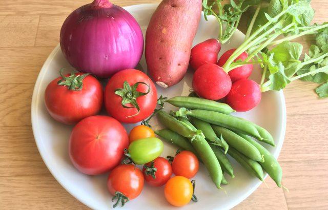 タキイ種苗の「野菜」に関する調査から、コロナ禍で変わった消費者の意識を学ぼう