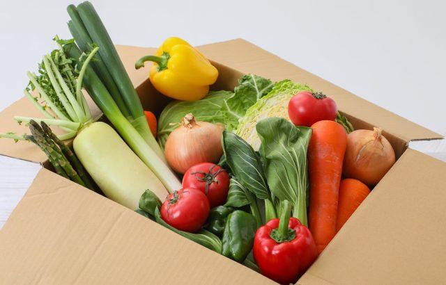 農業WEBマーケティングの基礎を学ぼう!商品が売れる仕組みとSNS等の効果的な使い方について。